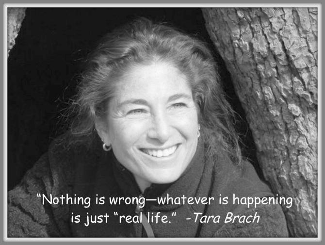 Tara Brach Quotes Impressive 33 Quotes From Tara Brach  Universoul Awakening